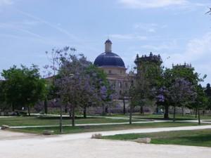 IMGP1925_Seelenbaumlerin Valencia Turia Gärten Mai