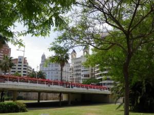 IMGP1941_Seelenbaumlerin Valencia Turia Gärten