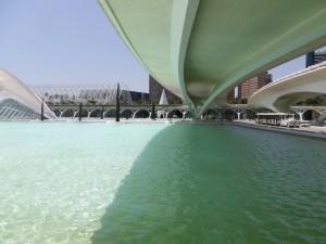IMGP2687_Seelenbaumlerin_Valencia Stadt der Wissenschaft u. Künste